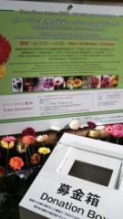佐久間恵 公式ブログ/ガーベラで希望と元気いっぱい♪ 画像2