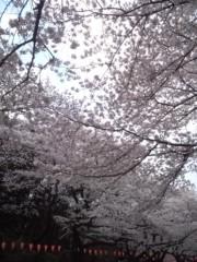 佐久間恵 公式ブログ/SAKURA 画像1