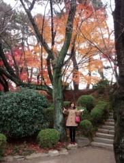 佐久間恵 公式ブログ/もみじのカーテン♪ 画像2