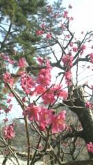 佐久間恵 公式ブログ/私の中の何かが… 画像1