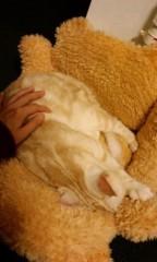 ちゃつ 公式ブログ/癒し☆ 画像1